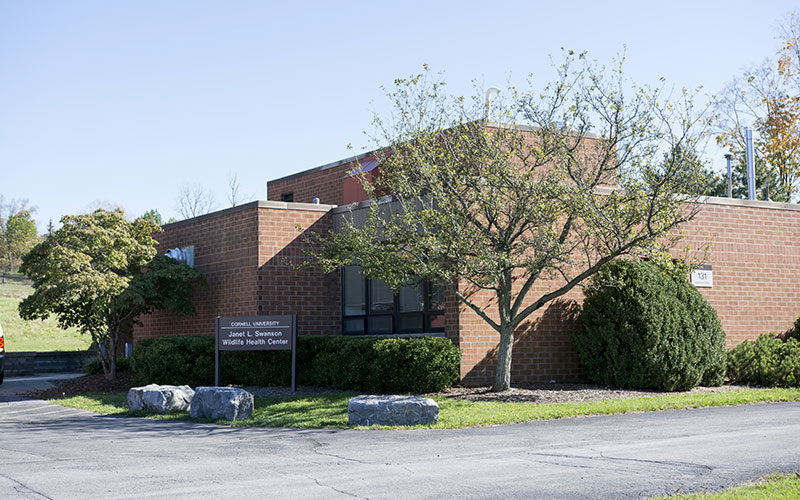 Main Entrance for the Wildlife Health Center