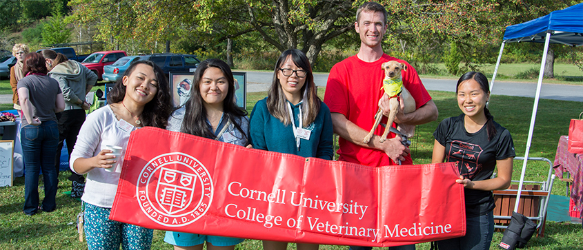 Cornell Veterinary students representing the College at Dog Fest