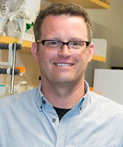 Dr. Brian VanderVen