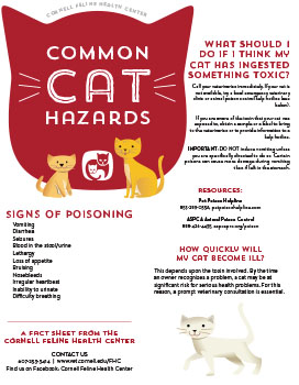 Cat Hazards Fact Sheet