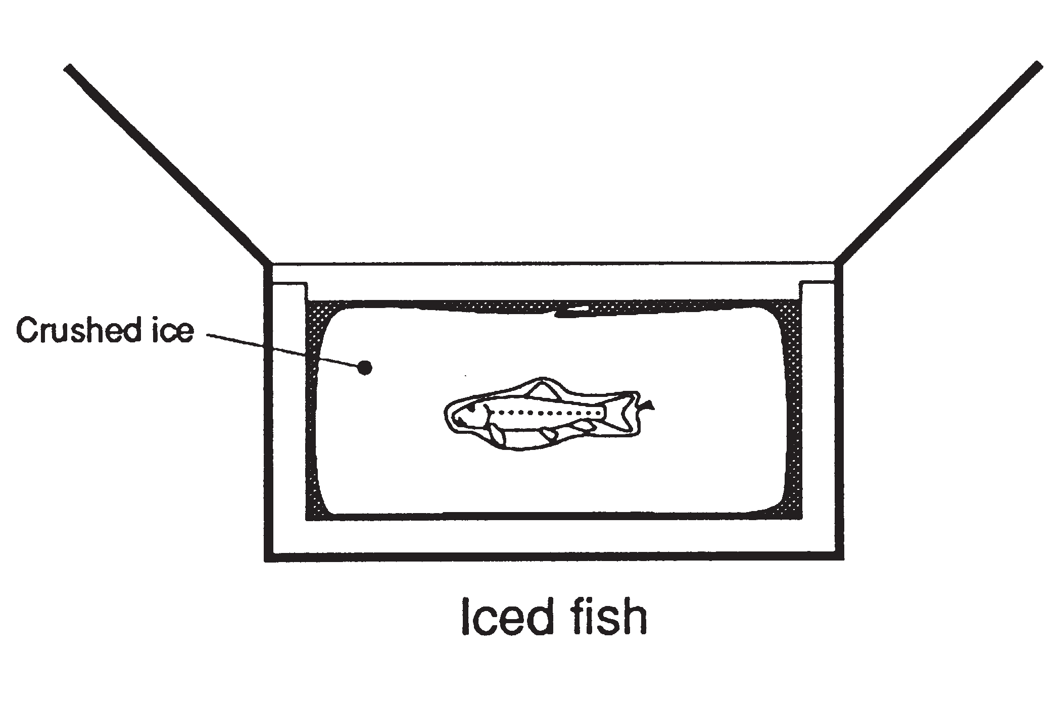 General fish health management info cornell university college diagram of how to package a fish sample on ice pooptronica