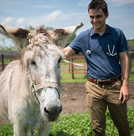 Ethan Heffner and Donkey