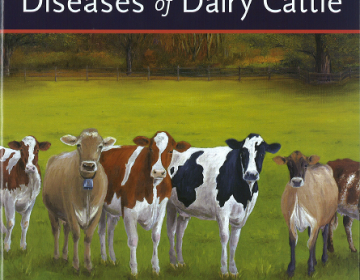 cover art for Rebhun's Diseases of Dairy Cattle