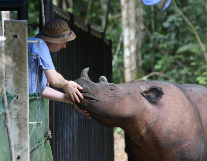 Robin Radcliffe with rhino